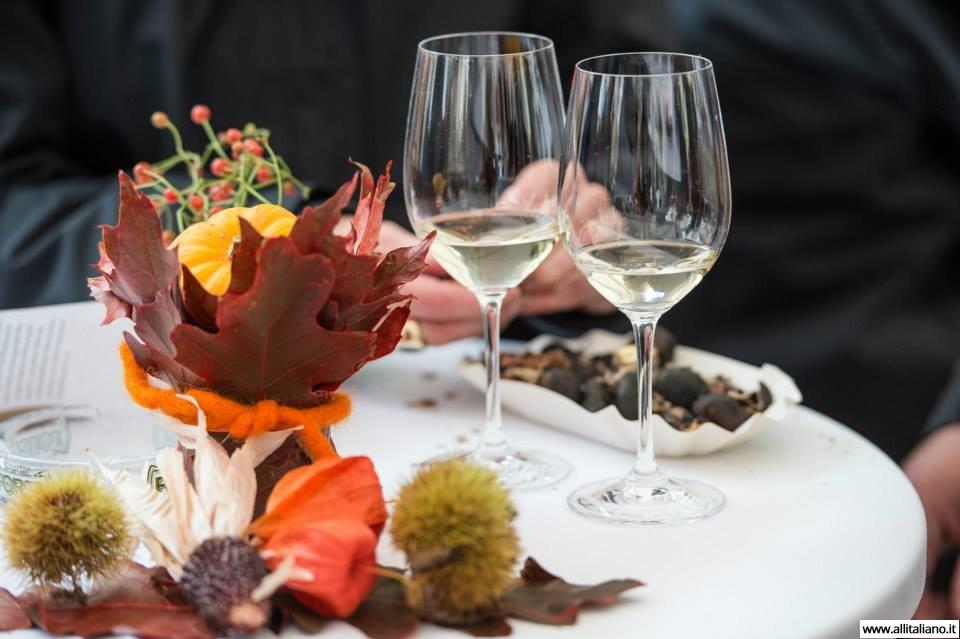 Праздники вина италии