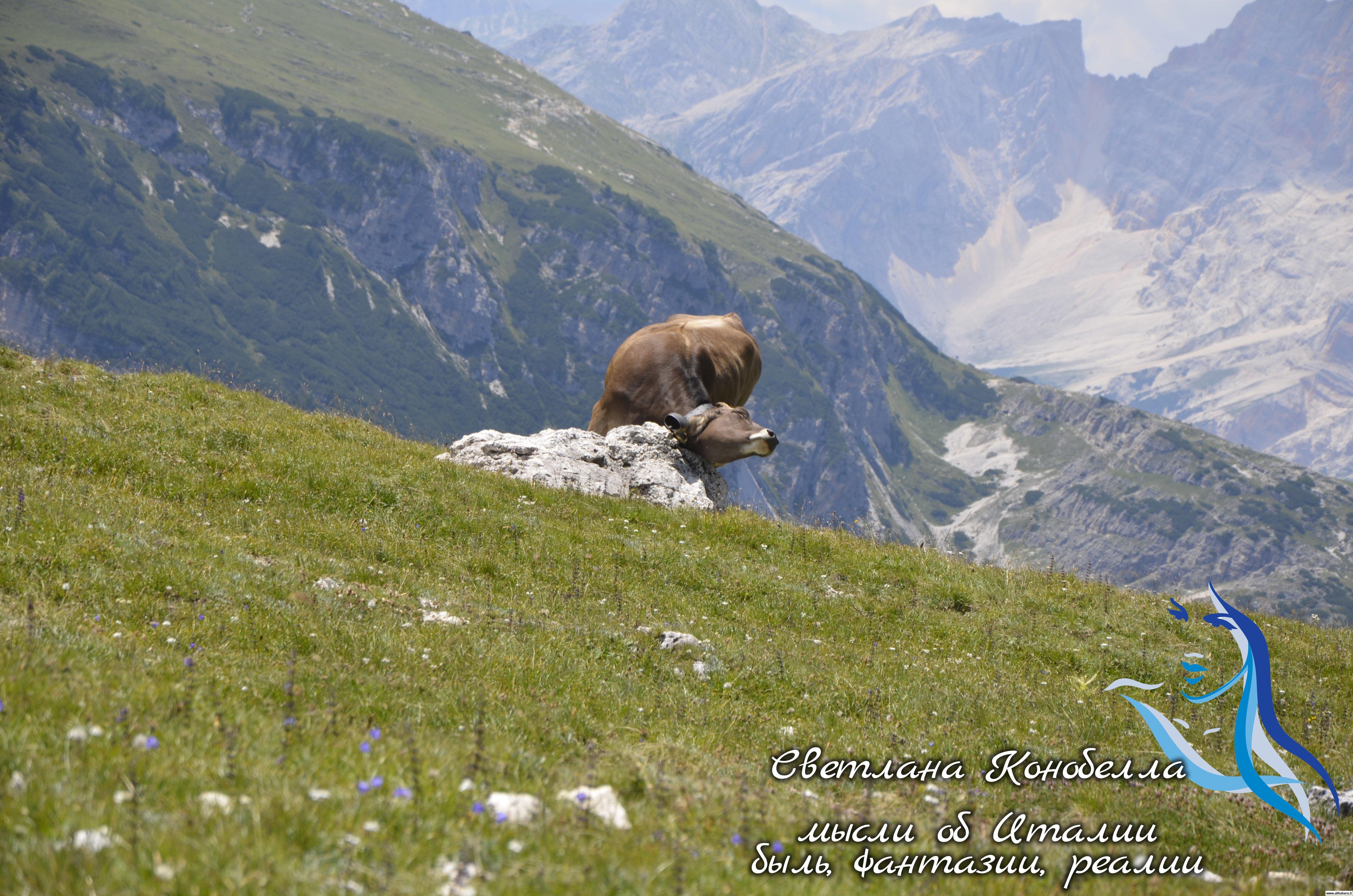 svetlana-konobella-italy-italia- gornye-puteshestvija-dolomitovye-alpy-trekking-hiking-juzhnyj-tirol-alto-adoge (1)