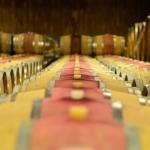 sommelier_svetlana_konobella_konstantin_konobeev_winetasting_winery_Terlan_cantina_Terlano