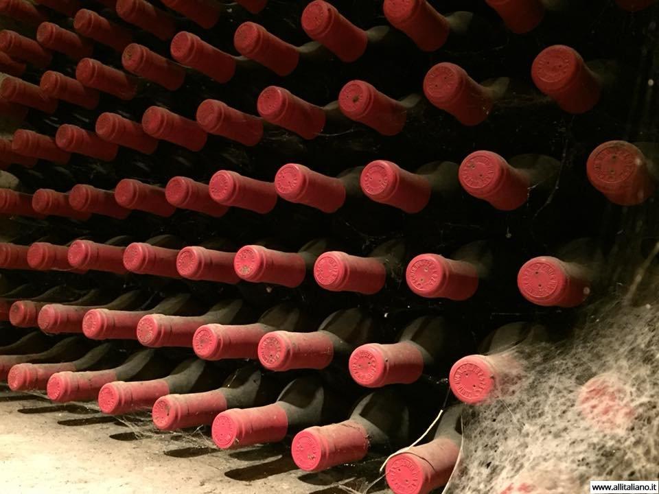 sommelier_svetlana_konobella_konstantin_konobeev_winetasting_winery_Terlan_cantina_Terlano10