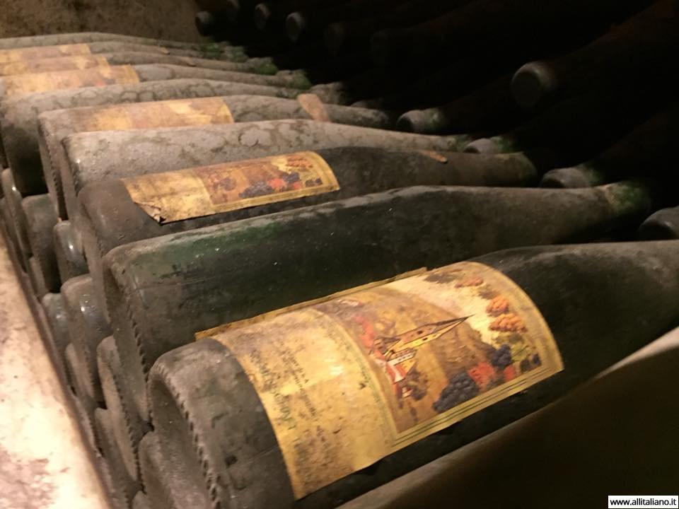 sommelier_svetlana_konobella_konstantin_konobeev_winetasting_winery_Terlan_cantina_Terlano13