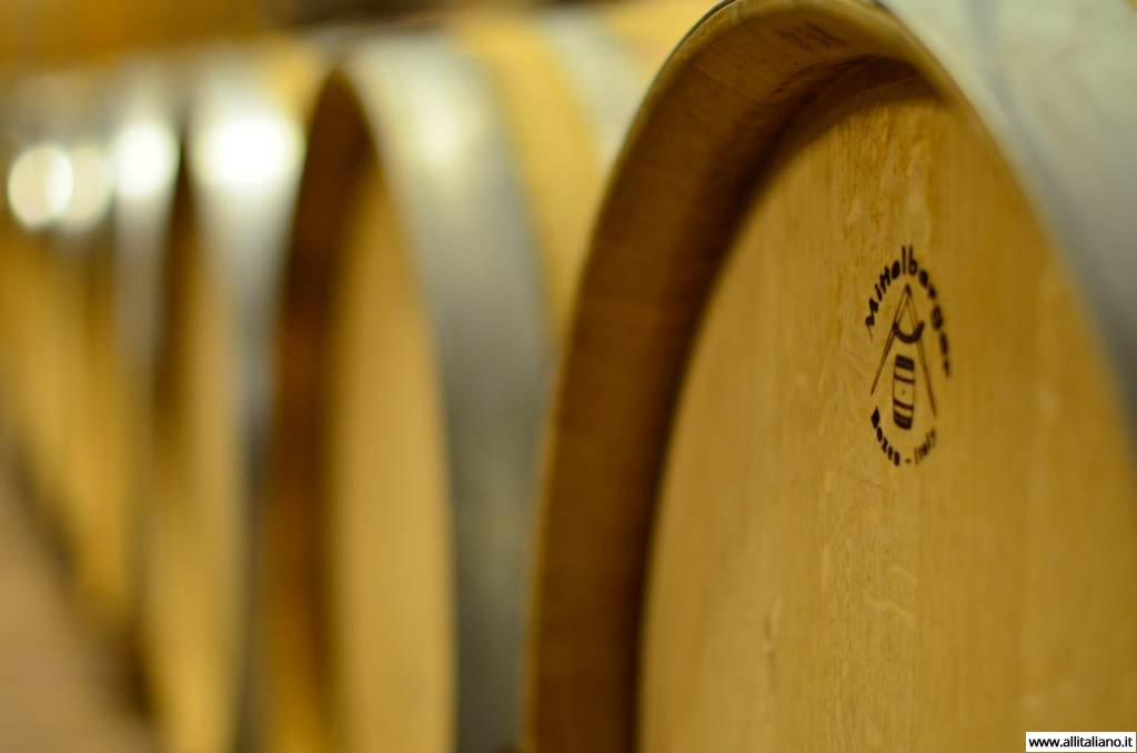 sommelier_svetlana_konobella_konstantin_konobeev_winetasting_winery_Terlan_cantina_Terlano3