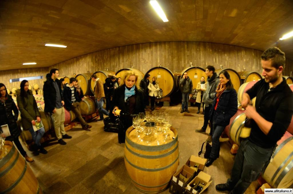 sommelier_svetlana_konobella_konstantin_konobeev_winetasting_winery_Terlan_cantina_Terlano4
