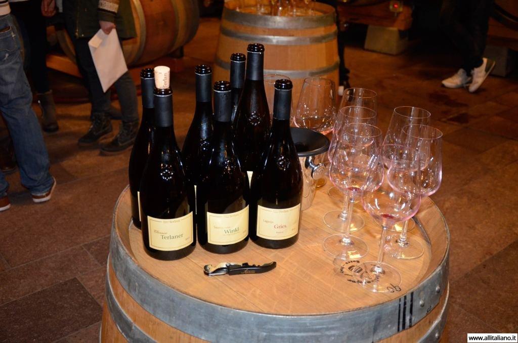 sommelier_svetlana_konobella_konstantin_konobeev_winetasting_winery_Terlan_cantina_Terlano7